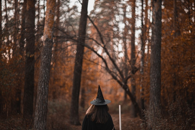 dziewczynka widziana tyłem w czapce czarownicy idzie przez las jesienią