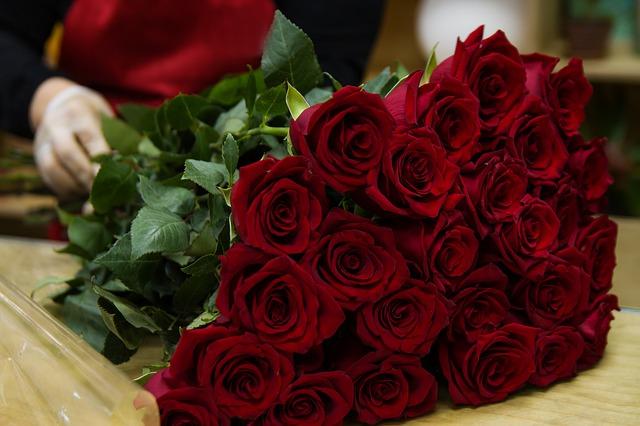 dużo czerwonych róż, które leżą na stole