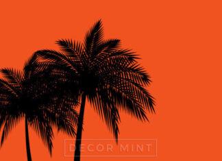 Tropikalne obrazy