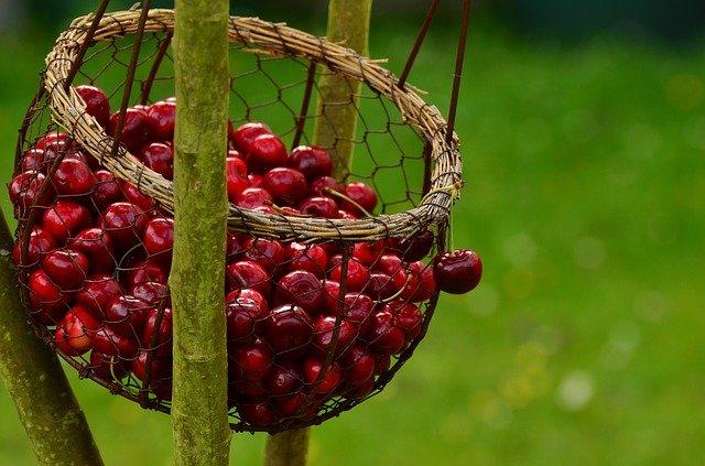 Domowe konfitury z wiśni