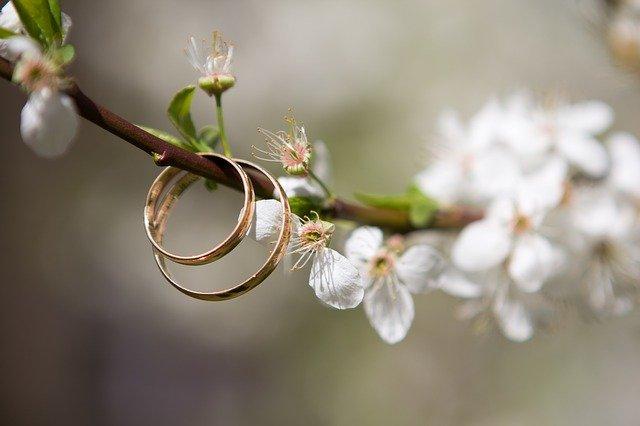 dwie złote obrączki wiszące na gałęzi z białym kwiatem